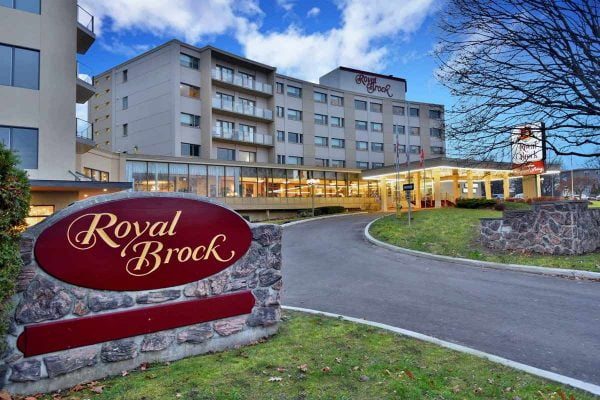 Royal-Brock-Trivida-website-main